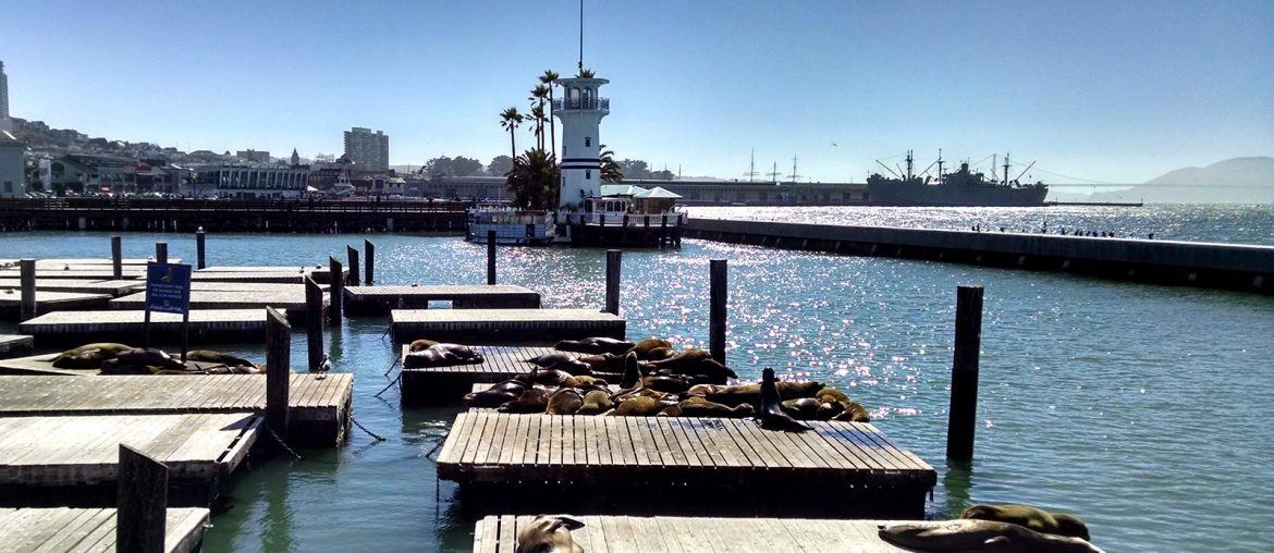 San Francisco Pier 39 when Roguetrippers visited in December 2016
