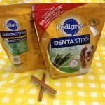 Roguetrippers bring dentastix and other longer lasting chews for their dogs on a roadtrip