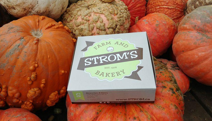 Strom's Farm & Bakery: Butter Tart Quest