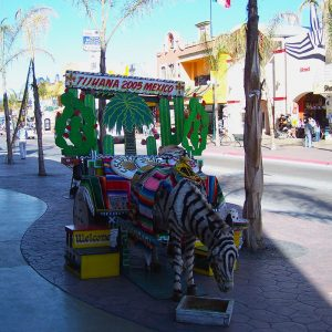 Tijuana Zonkey is a popular tourist attraction for people on a day trip.