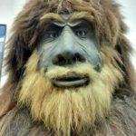 Bigfoot at the Cryptozoology museum