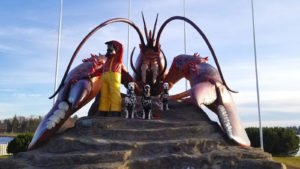 Roadside attraction like Giant Lobster in Shediac New Brunswick makes travelling with Dogs more fun.