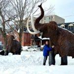 Mastodon statues Ottawa Museum of Nature