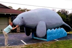 Roguetrippers visit the giant manatee statue in Homosassa Springs
